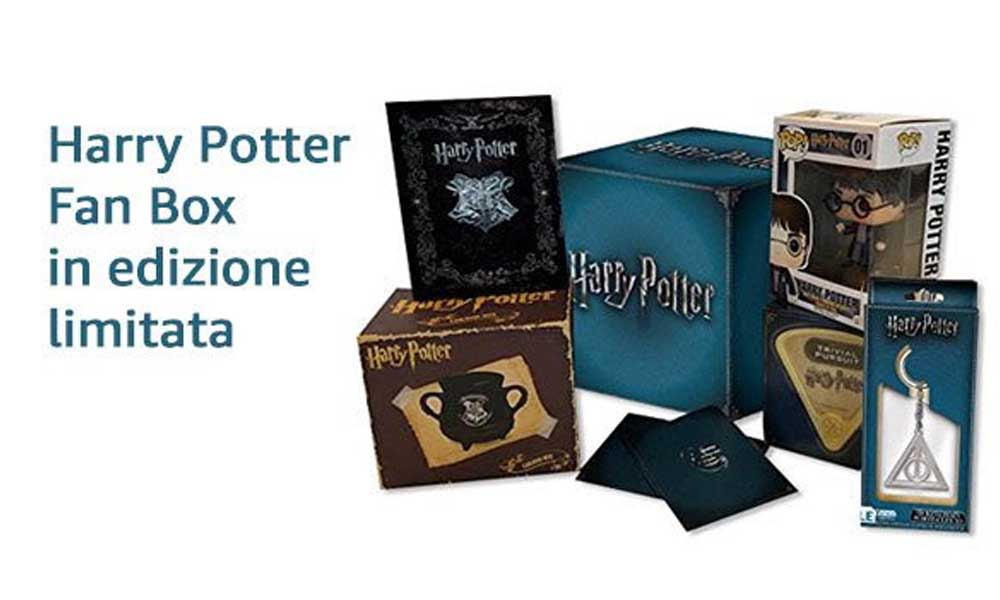 Harry Potter Fan Box